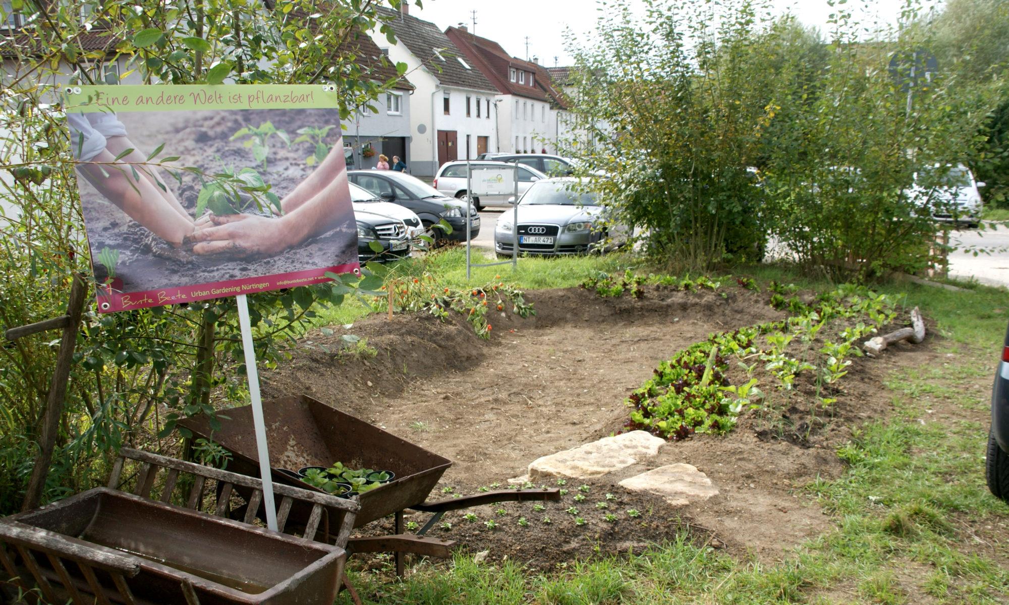 Kraterbeet Wörth-Garten